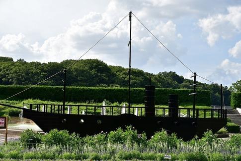 2018-07-29  Resized  黒船(真夏の武蔵丘陵森林公園)‥ (4).jpg