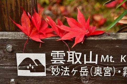 2018-11-10  Resized  三峰山(秩父大滝村)‥ (8).jpg