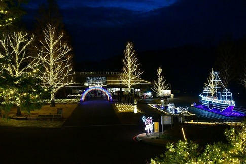 2018-12-22  A-Resized  スターライトイルミネーション(森林公園)‥ (19).jpg