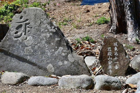 2019-04-28  B-Resized  五大尊のツツジ(越生町)‥ (10).jpg