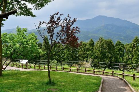 2019-05-18  Resized  関越自動車道(赤城高原SA)‥ (3).jpg