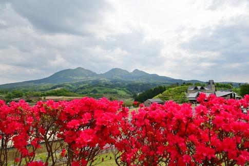 2019-05-18  Resized  高山ふれあいパーク‥ (2).jpg
