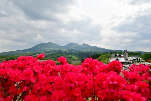 2019-05-18  Resized  高山ふれあいパーク‥ (3).jpg