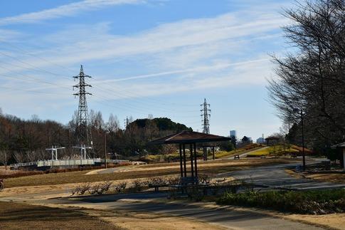 Resized  花の丘農林公苑‥ (5).jpg