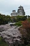 Resized 姫路城‥(西の丸).jpg
