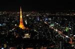 Resized 六本木ヒルズからの夜景‥ (8).jpg