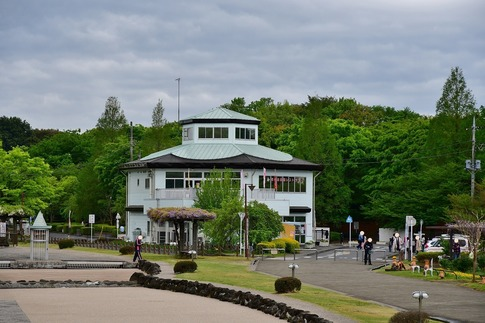 2018-04-15  B-Resized  花の丘農林公苑‥ (12).jpg