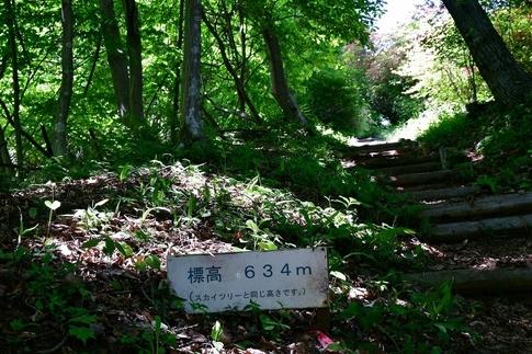 2018-05-05  Resized  二本木峠(東秩父村)‥ (8).jpg