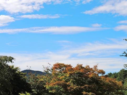 2018-09-22  Resized  寄居町中間平公園‥ (1).jpg