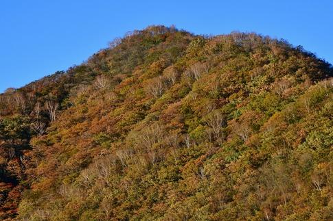 2018-10-07  Resized  赤城山(覚満淵)‥ (15).jpg