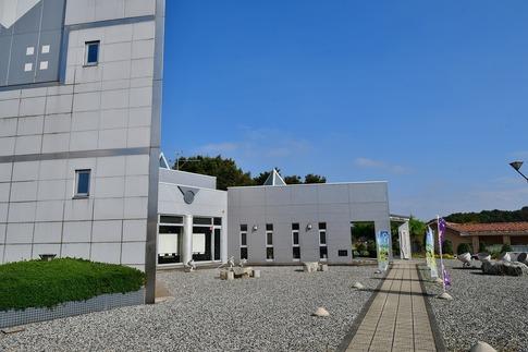 2018-10-27  B-Resized  秋の邑楽中央公園‥ (8).jpg