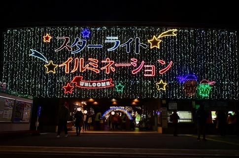 2018-12-22  A-Resized  スターライトイルミネーション(森林公園)‥ (26).jpg