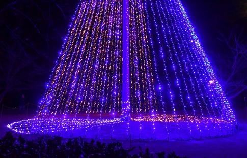 2018-12-22  Resized  平成の森公園(イルミネーション)‥ (5).jpg
