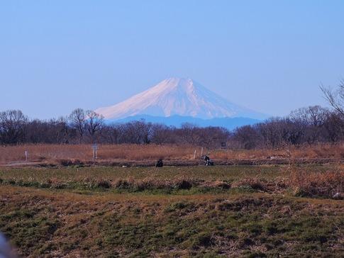 2019-01-27  Resized  桶川市川田谷(桶詰橋)‥ (1).jpg