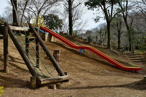 2019-02-10  Resized  城山公園(桶川市)‥ (9).jpg