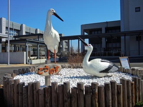 2019-03-02  Resized  鴻巣市役所‥ (1).jpg