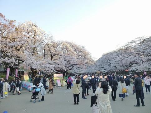 2019-04-04  Resized  上野公園‥ (8).jpg
