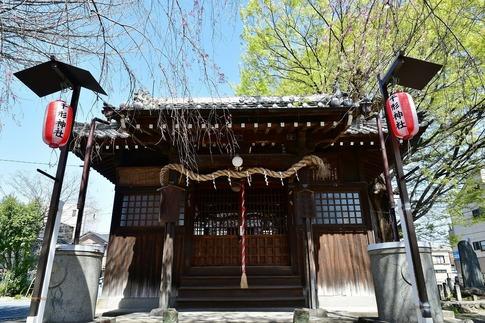 2019-04-06  Resized  熊谷市(千形神社)‥ (4).jpg