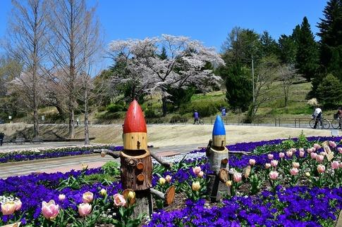 2019-04-13  A-Resized  武蔵丘陵森林公園‥ (6).jpg