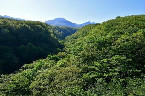 2019-05-25  B-Resized  那須八幡つつじ園地‥ (3).jpg