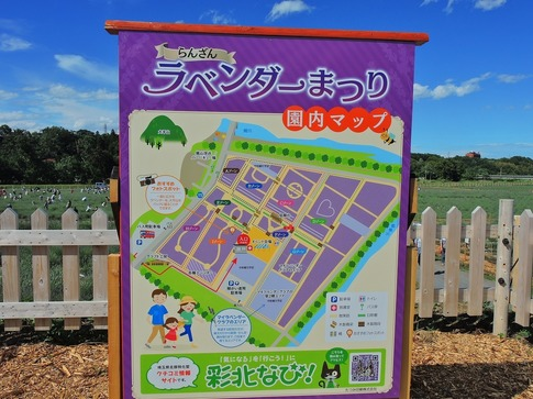 2019-06-16  Resized  ラベンダー千年の苑(嵐山町)‥ (12).jpg