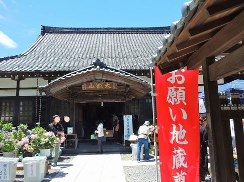 2019-06-16  Resized  金泉寺のあじさい(嵐山町)‥ (9).jpg