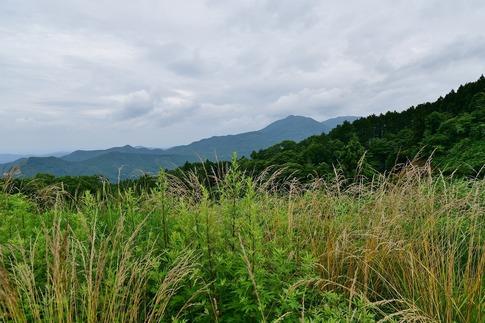 2019-07-06  Resized  秩父高原牧場‥ (13).jpg