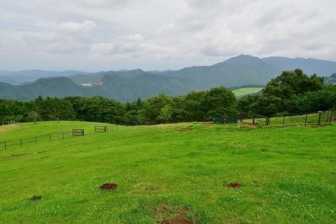 2019-07-06  Resized  秩父高原牧場の山羊‥ (1).jpg