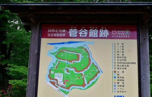 2019-07-15  Resized  菅谷館跡(嵐山町)‥ (4).jpg