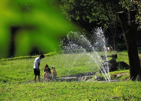 2019-09-15  Resized  晩夏の城山公園(桶川市)‥ (12).jpg