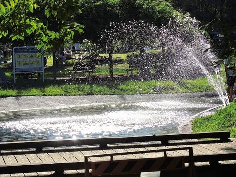 2019-09-15  Resized  晩夏の城山公園(桶川市)‥ (13).jpg