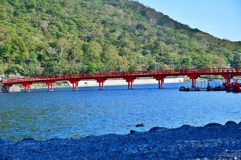 2019-10-05  Resized  赤城神社‥ (3).jpg