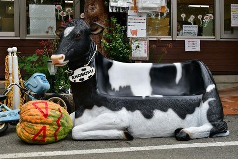 2019-10-06  Resized  榎本牧場(上尾市)‥ (1).jpg