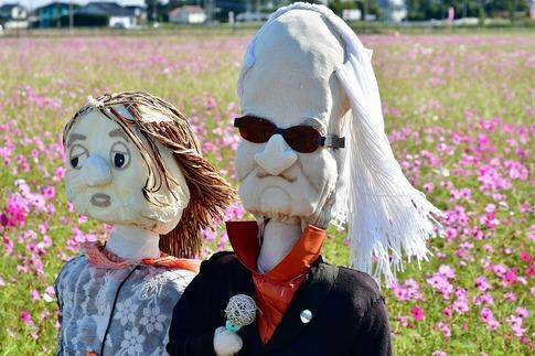 2019-11-04  吉見町のコスモス畑‥ .jpg