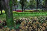 ★森林公園‥ B) (4).jpg