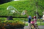 B-Resized 花の丘公園.jpg