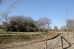 B-Resized 上尾丸山公園‥.jpg
