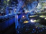 新宿サザンテラスのイルミネーション (10).jpg