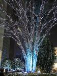 新宿サザンテラスのイルミネーション (3).jpg