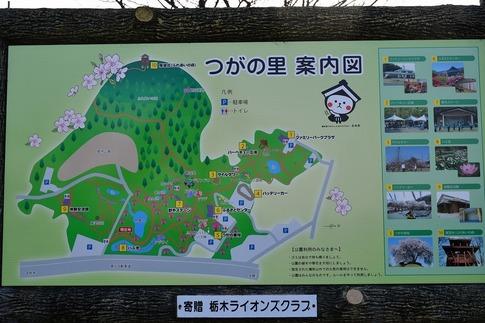 Resized  つがの里(栃木県栃木市)‥ (1).jpg