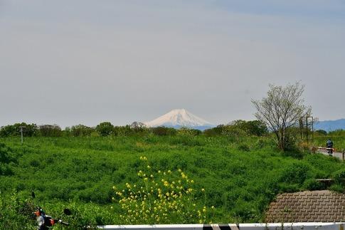 Resized  富士山‥ (2).jpg