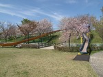 Resized  桜リバーサイドパーク ‥(続編) (17).jpg
