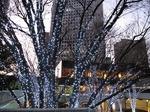 Resized 新宿西口のイルミ‥.jpg