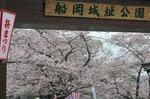 Resized 船岡城址公園 (11).jpg
