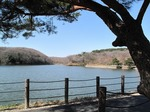 Resized 早春の八丁湖‥ (1).jpg