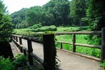 Resized 蝶の里(嵐山町) (1).jpg