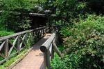 Resized 蝶の里(嵐山町) (5).jpg