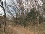 Resized 冬枯れの自然観察公園‥ (4).jpg