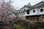 Resized 姫路城‥(西の丸) (12).jpg