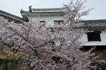 Resized 姫路城‥(西の丸) (13).jpg